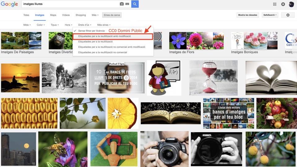 imatges-lliures-google
