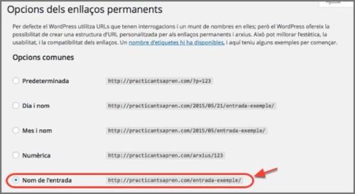 5_opcions_enllaços_permanents2
