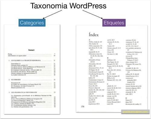 taxonomia wordpress