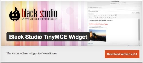 black-studio-tinymce-widget 2